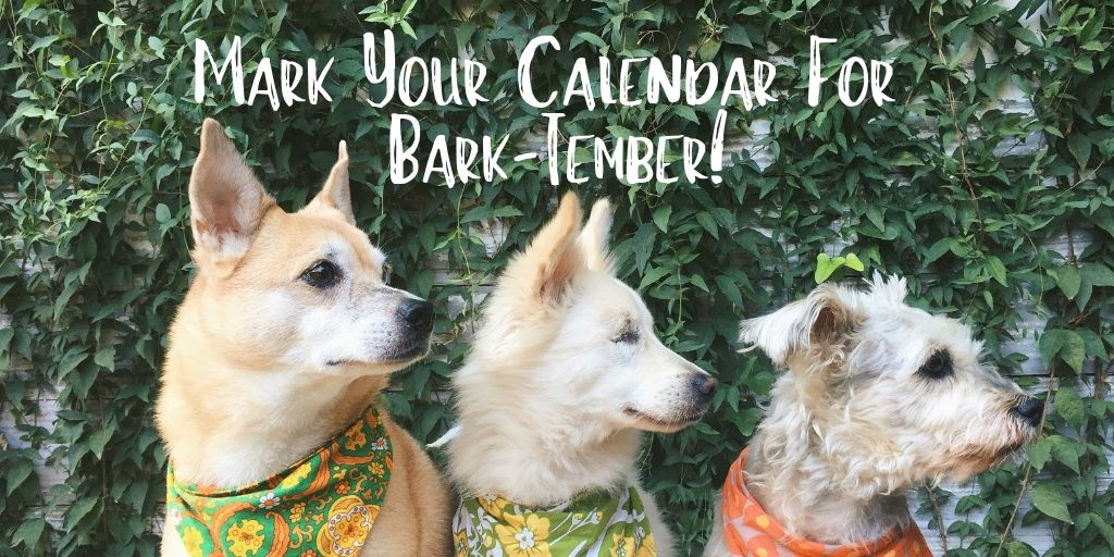 Mark your calendars for Bark-tember! This dog friendly event will be held from 9 AM to 1 PM on September 14, 2019 at OHSO Brewery- ParadiseValley in Phoenix, AZ, US.
